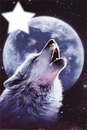 appel du loup