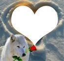 un amour de loup