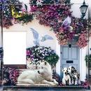 cadre façade fleurie 1 photo