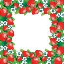 Fraise Strawberry Erdbeere