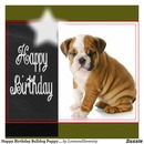 Happy birthay2
