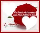 my amor