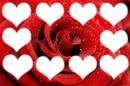 pele mele rose