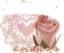 rose bebe