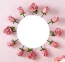 ciranda de botões rosa! by*maria ribeiro*