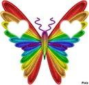 papillon coeur <3