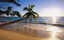 Love Praia