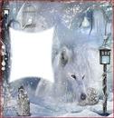 Loup hiver