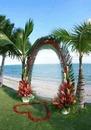 renewilly arco de palmas