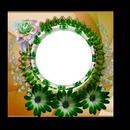 Mari19 Circulo de  flores