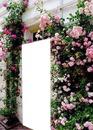 fleur et porte