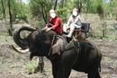 promenade a dos d'elephant