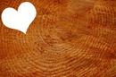 Coeur sur fond de bois ♥