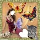 ezia papillons