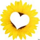 un Rayon de soleil d'amour