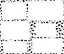 dalmatien 6 cadres