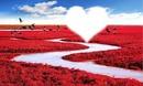 corazon con flores