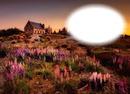 Maison-fleurs-paysage