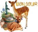 bambi et sa maman 1 photo