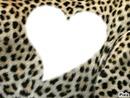 Leopard en coeur <3