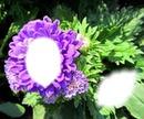 visage du fleur