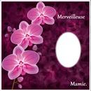 "carte Merveilleuse mamie "" bonne fête mamie"""