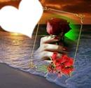 le coeur et la rose