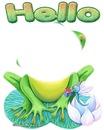 grenouille 4
