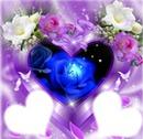 coeur fleurs