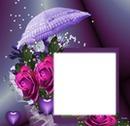 Parapluie-rose