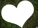 L'amour est dans l'herbe
