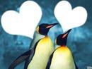 Mes Pinguins ,, 22