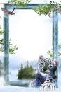 cadre tigre 1 photo
