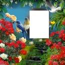 Fleurs-oiseaux