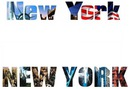 New.York New.York FDNY