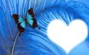 coeur papillon bleu