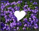 Cœur et Fleur