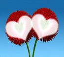 Blume Herz -- Blume Herz