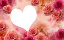 coração em flor