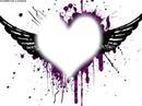 coeur d'aile