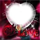 amor mio