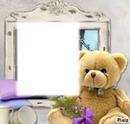 frame bear