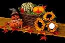 fruits et fleurs d'automne