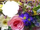 fleurs ......