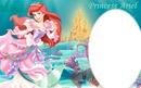 cadre princesse ariel