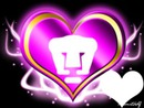 love pumas 02