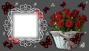 Cadre avec un bouquet