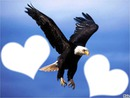 L'aigle de la liberté