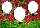 Cadres fleurs*