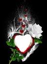 renewilly corazon love y rosa